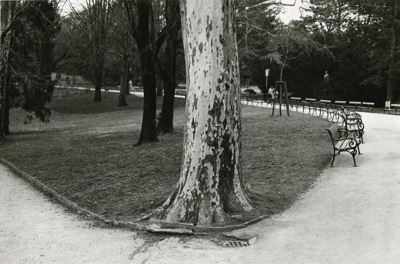 Tuerkenschanzpark